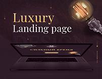 Luxury Landing Page Design   Branding Courses