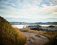 Summer Landscapes pt 2