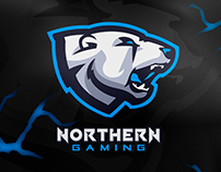 S6 - Jersey Design: Northern Gaming