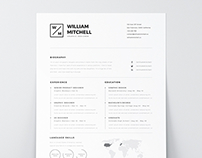free mini stic  amp  clean resume   ps  amp  ai on behance