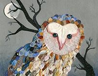 Lechuza de campanario. Barn Owl