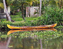 Boats of the backwaters