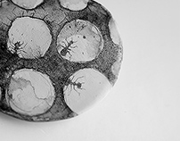 brooch ''Ants''