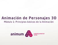 Master On-line de Animación de Personajes