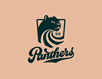 Incheon Panthers