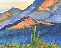 Growler Mountain - Tucson