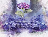 Proexport Colombia - Flowers Japan