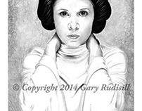Princess Leia Step by Step