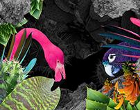 Su'legria Festival | Campaign 2014