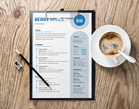 Free Effective Resume Template