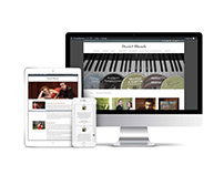 Professional musician website