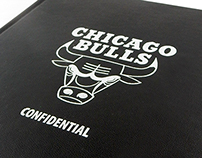 Chicago Bulls Free Agent Pitch
