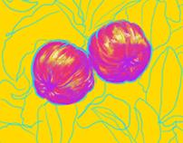 Ilustração Acerolas