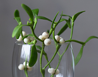 Mistletoe of cold porcelain