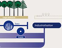 Infographies filière bois-énergie