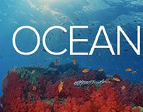 Fields of Oceanography - Alistair Economakis blog