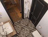LACONIC LINESInterior bathroom