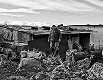 STELLA MELIGOUNAKI - SHEPHERDS LIFE -KIOSK OF DEMOCRACY