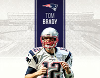 New England Patriots 2016 Infographics