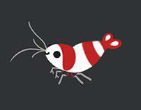 Crystal red shrimps