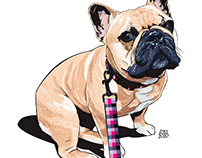 "COMMISIONED PET PORTRAIT - ""CLAUDE"" The indomitable."