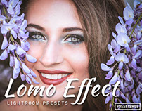 20 Premium Lomo Lightroom Preset