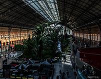 TO LISBON Rail/Railway Atocha/Chamartin MADRID 2017