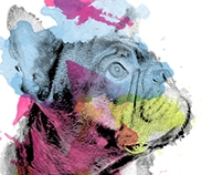 Abstract Dogs Illustrations