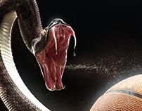 NBA (Cobra) | África