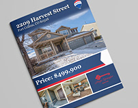 Remax 4 page Real Estate Flier