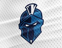 Davis-Townsend Titans | School Logo