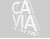 Logo y ploter de vidriera para CAVIA