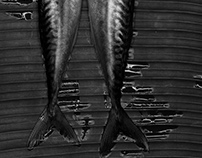 black & white Fish