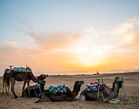 Good morning, Sahara! | Photography