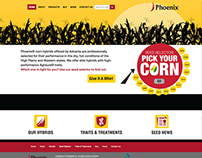 Phoenix Corn Website Development