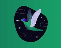 Flowe — Illustration system