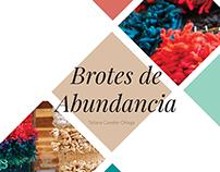 Brotes de Abundancia - Diseño desde los oficios