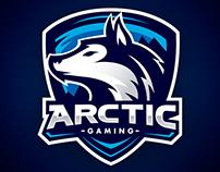Aidy | Team Arctic | #JellyChallenge1