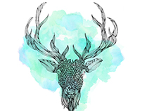 Deer • Illustration