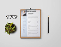 Free Finance Executive Resume Template with Example