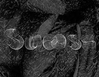 Swoosh - creative font