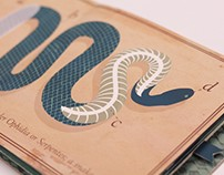Hand-made Snake Book