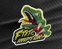 Diseño de marca // Fixie Raptor Team