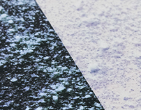 FJELDS Debut Album