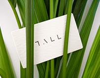 Studio Tall Brand Identity
