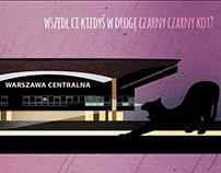 Czarny Czarny Kot #komiks #comic #blackcat