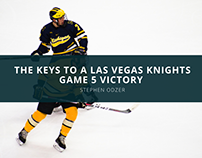 Hockey Fan Stephen Odzer Discusses the Keys to a Las