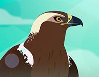 WWF · SAVE DOÑANA