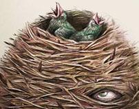 Cabeza de nido.