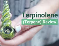 Reviewing Terpinolene Terpene (Instaleaf)
